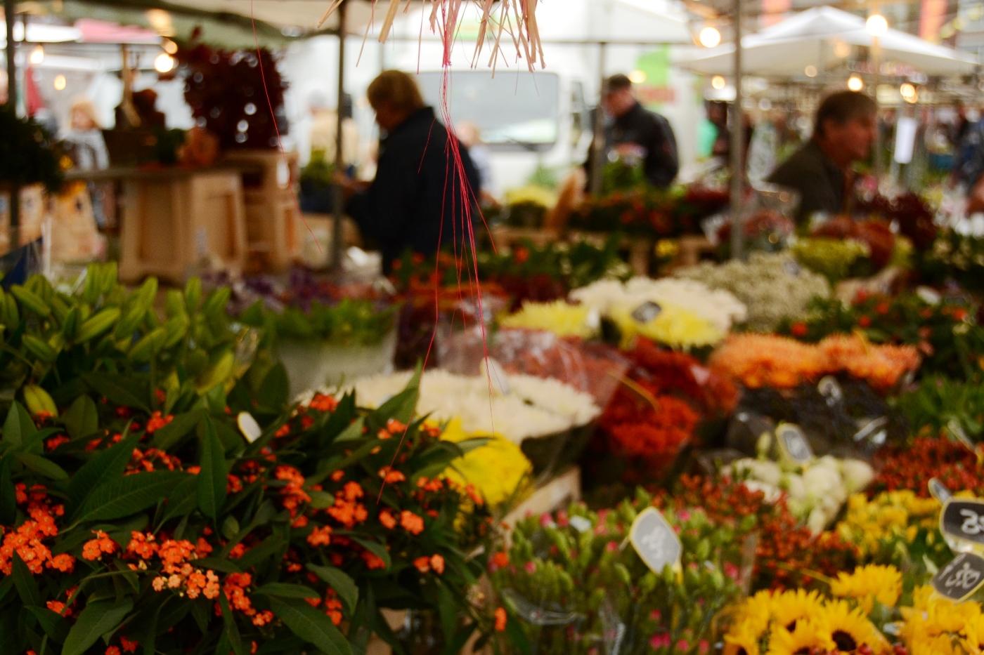 Markt in Eibergen in de Achterhoek
