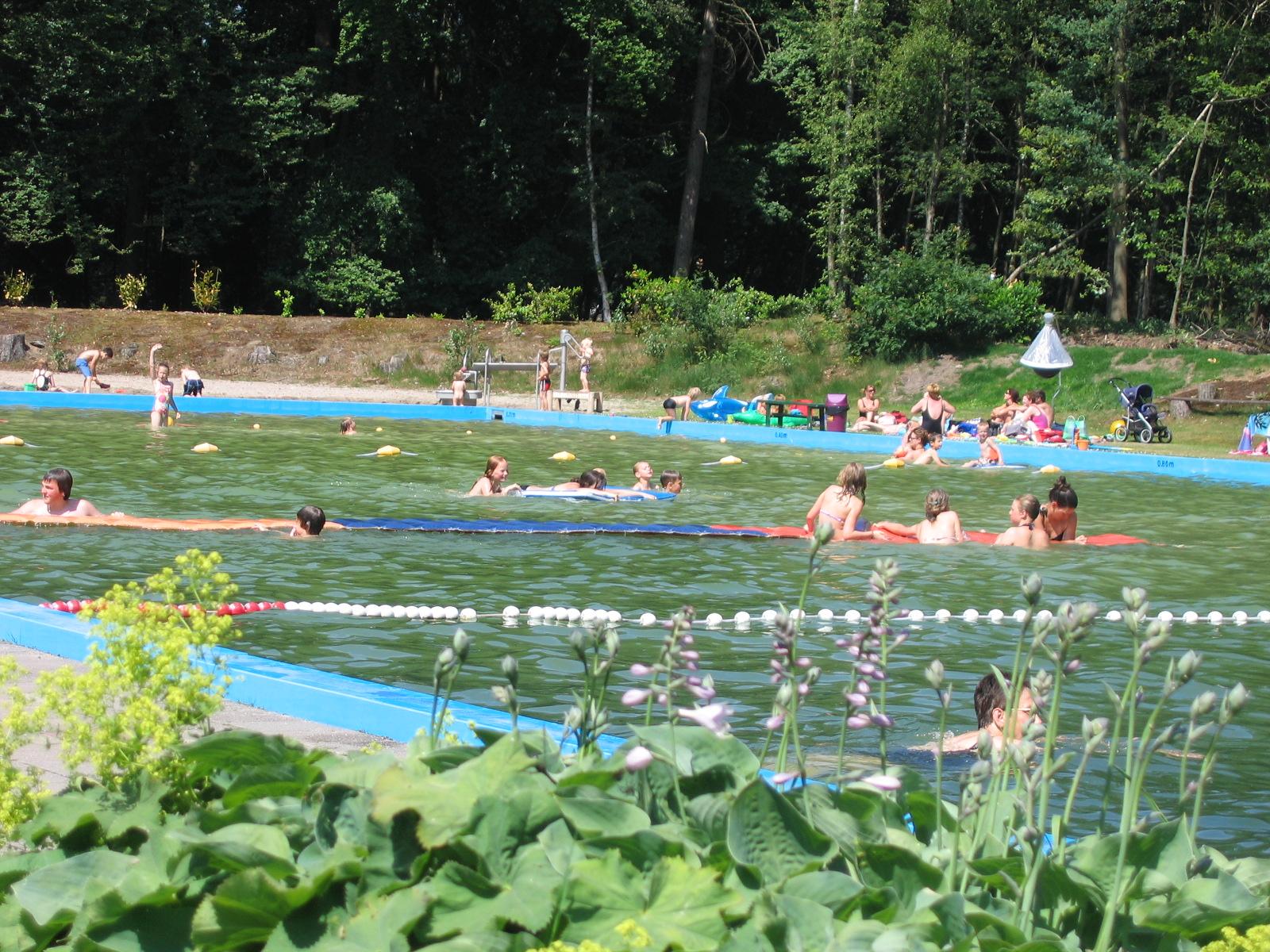 Natuurzwembad Rekken