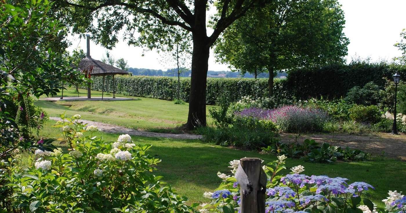 Vakantiehuizen - Groepsaccommodatie - Camping - Wijngaard: Wijndomein Erve Wisselink in Eibergen in Gelderland