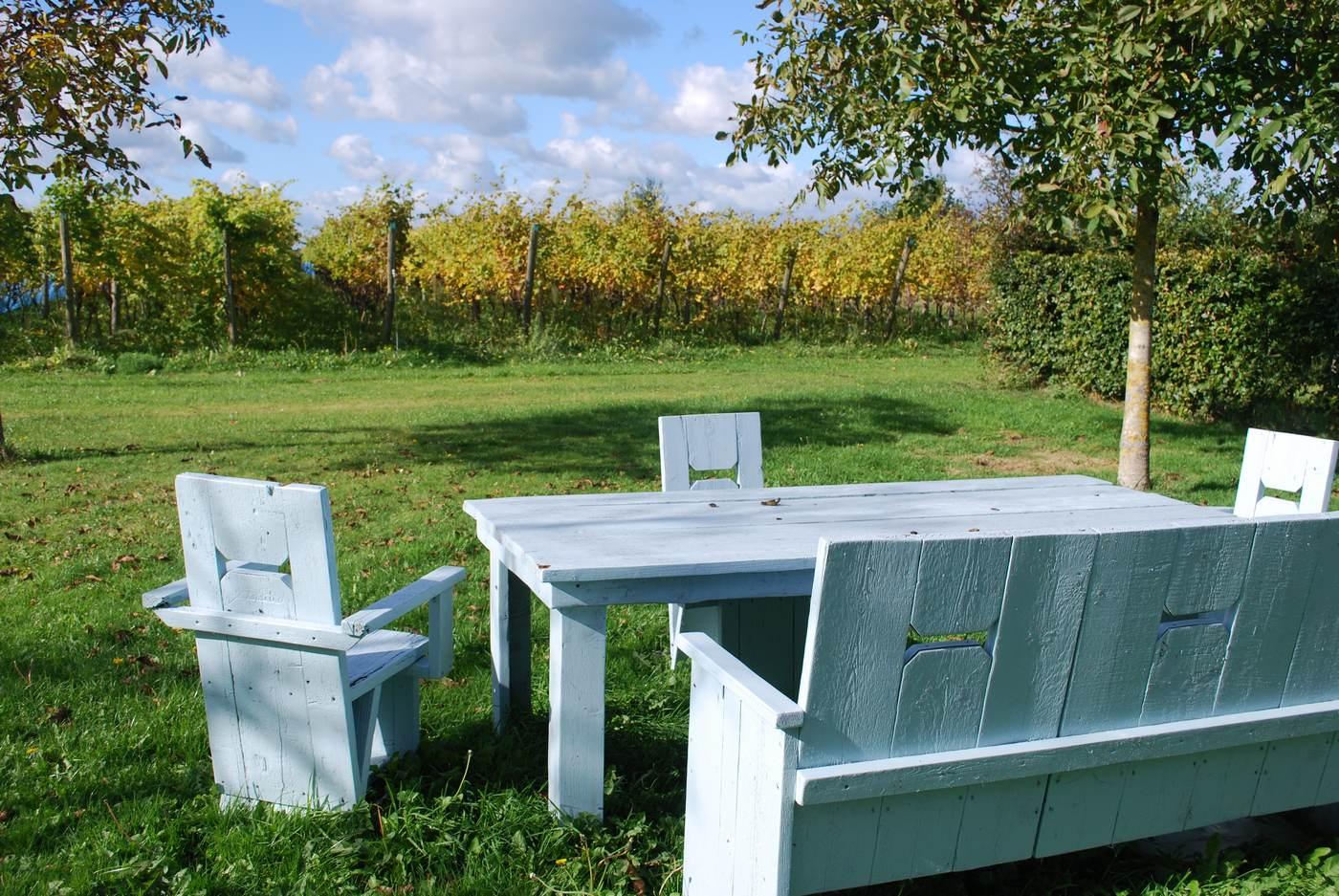 Wijnmakerij - Wijnhuis Erve Wisselink in Eibergen in de Achterhoek (nabij Duitse grens)