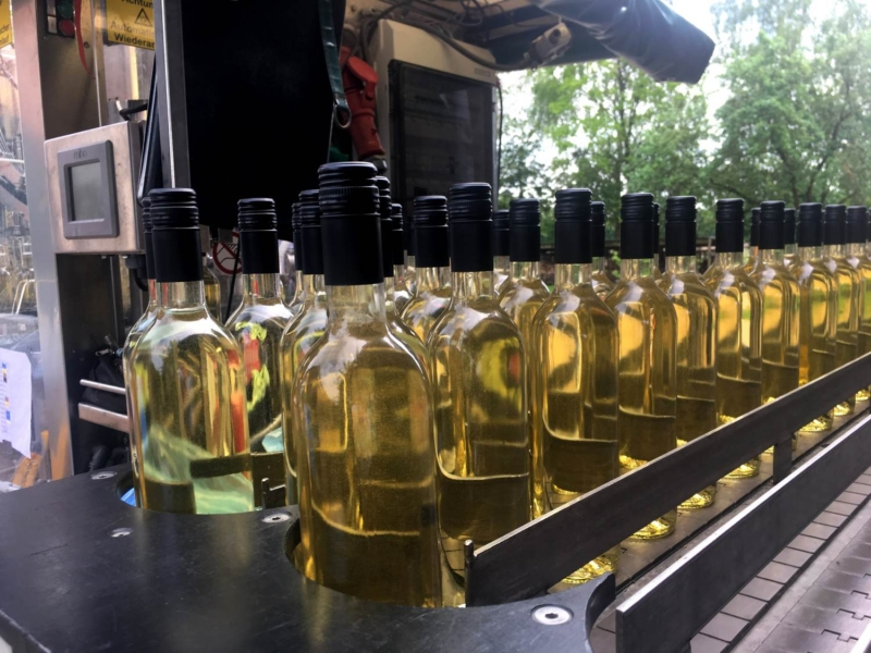 Nederlandse Wijngaard - Wijndomein Erve Wisselink in Eibergen - Achterhoek