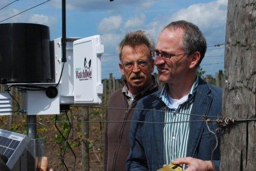 Nederlandse Wijnboer - Wijndomein Erve Wisselink in Eibergen - Achterhoek